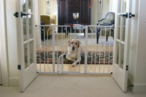 Best Baby Gates For Dogs